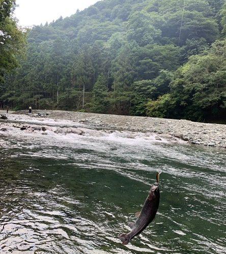 釣りに行ってきました!! ~早戸川国際マス釣り場~